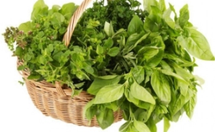 نکاتی راجع به بخارپز کردن سبزیجات