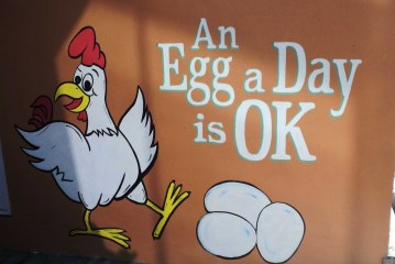 ۱۷ مهر- روز جهانی تخم مرغ