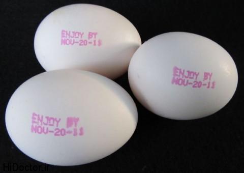 eggs-480x340