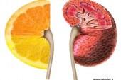 تغذیه در بیماری های کلیوی