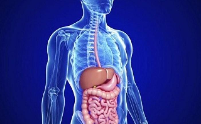 تغذیه درمانی در زخم های دستگاه گوارش (۱)